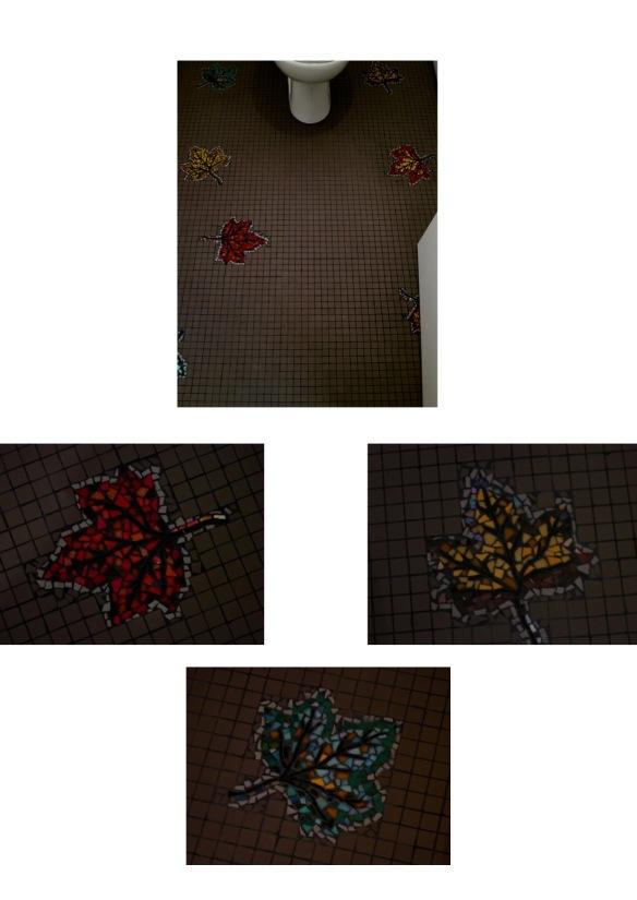 Sol WC , feuillles d'érables