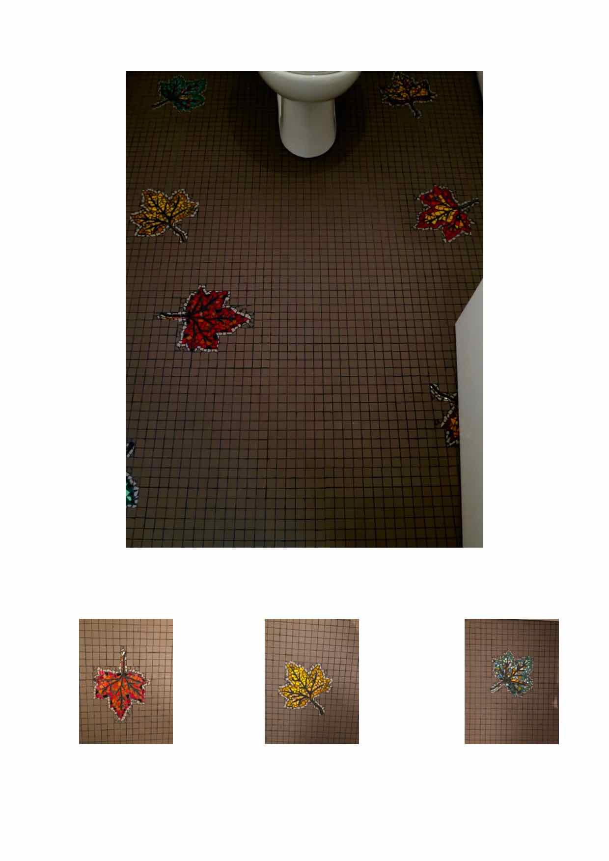 Sol wc mosaïque